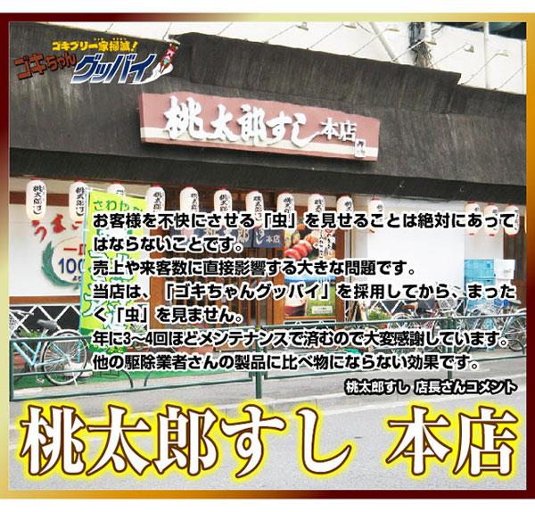 ゴキちゃんグッバイ 1パック(6個入)